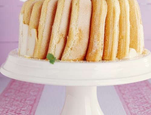 Vanille Pudding Biskuit Torte